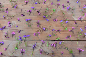 pink and purple wildflowers on an old wooden background with larch boards, top view