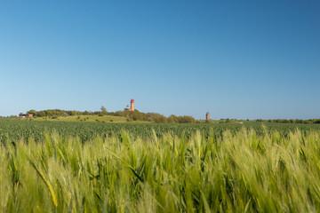 Leuchtturm Kap Arkona auf der Insel Rügen. Blick über Getreide Feld zum Leuchttrum.