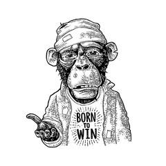 Monkeys begging. Lettering BORN to WIN. Vintage black engraving