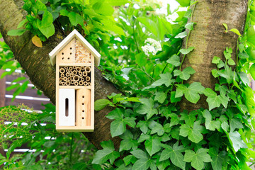 A wooden insect hotel in the tree
