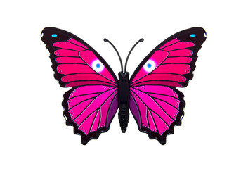 Beautiful pink colored butterfly