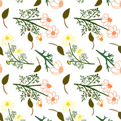 Seamless floral pattern. Isolated Vector illustration. Natural design elements