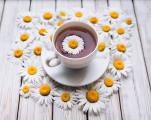 Cup of chamomile tea and saucer with fresh daisies. White fresh flowers on a light gray vintage wooden background. The concept of a sedative.