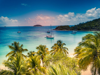 Aerial view of Mayreau beach in St-Vincent and the Grenadines - Tobago Cays. The paradise beach with palm trees and white sand beach Fototapete