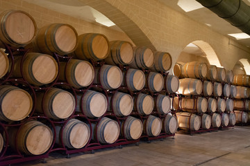 Modern bio wine production factory in Italy, caves with french of americal oak barrels used for aging of wine