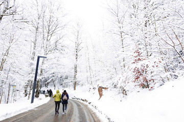 Travelers are walking on the street cover Snow in Europe