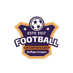 Vector soccer league football ball goal icon