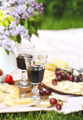Summer picnic with cheese, flat bread, wine, fruits and bread. Picnic at the park.