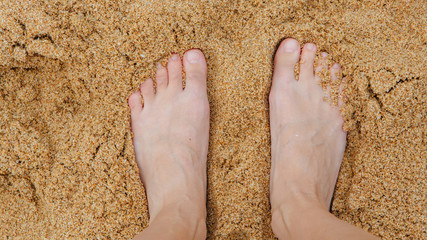 Woman's Bare Feet on the beach.
