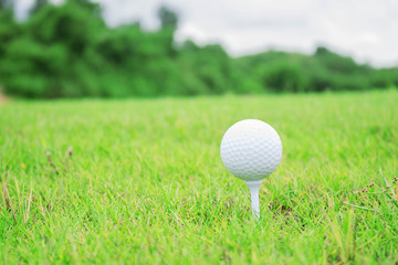 Golf ball with green of nature.