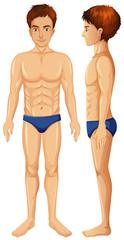 A Vector of Man Body