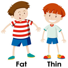 Differences between fat and thing