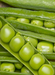 green peas in a legume - close up