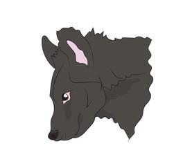 hyena portrait, vector,