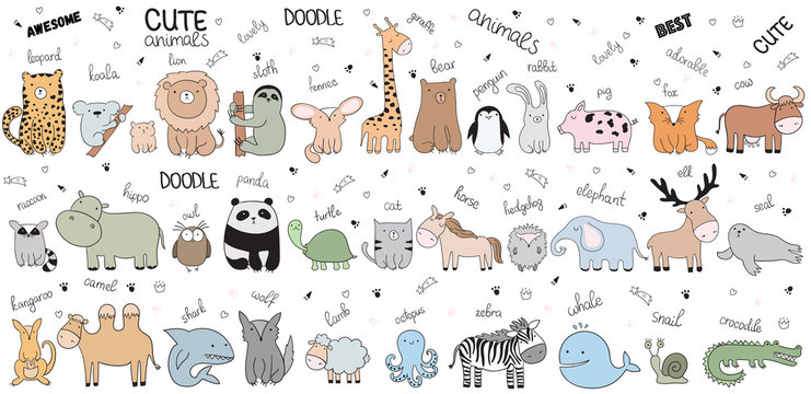 Vector cartoon big set of cute doodle animals