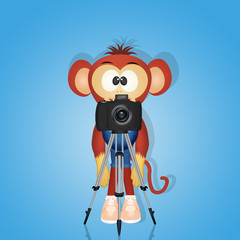 monkey with camera on tripod