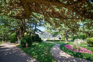 Botanical garden of Sežana, 19th century, Slovenia A 150-years old cedar, flowerbeds, blooming pergolas and the palmarium - garden of joy