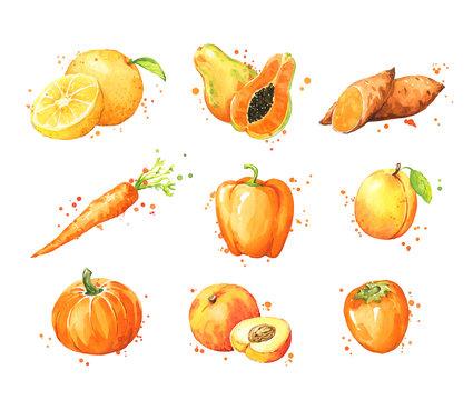 Assortment of orange foods, watercolor fruit and vegtables