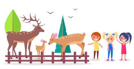 Deer Family in Woods Isolated Cartoon Illustration