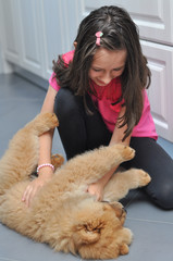 Happy girl play with her puppy in the house. Child and chow chow as a best friends