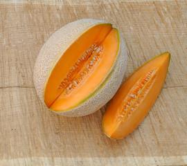Galia Netzt Honig Melone lecker präsentiert