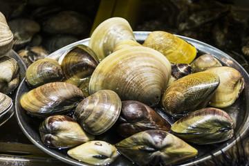 Muschelangebot auf dem Fischmarkt von Busan.