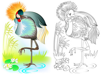 Colorful and black and white pattern for coloring. Illustration of crowned crane. Worksheet for children and adults. Vector image.