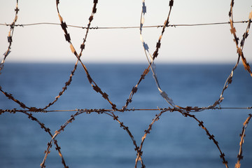Old rusted barbed wire and sea at background
