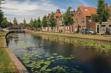 Canal with aquatic plants, brick houses and bridge on a sunny day in Weesp. Quiet and pleasant village full of canals and green near Amsterdam. Northern Netherlands.