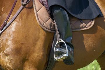 bottes de cheval