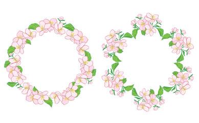 apple tree flowers in wreath - floral vector frames