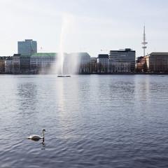Binnenalster in Hamburg mit Fontäne, Schwan und Fernsehturm