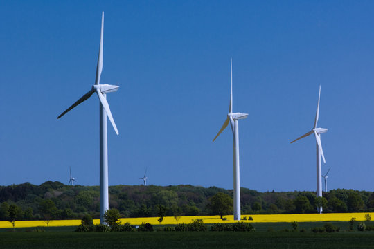 drei Windräder in Schleswig-Holstein mit Rapsfeldund Bäumen