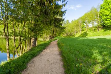Droga pośród łąk i drzew w Szurpiłach pod Górą Zamkową