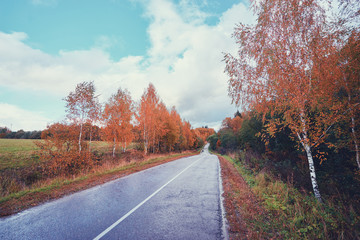 Fall season. Beautiful landscape with empty road.