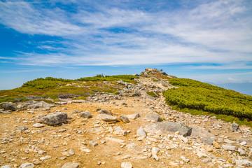 新緑の山と登山道