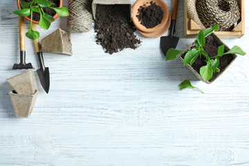 Flat lay composition with gardening tools and plants on wooden background