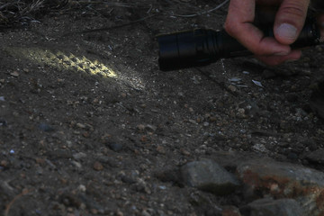 Border patrol agents shine a flashlight at shoe prints along the U.S. border with Mexico in Tecate, California