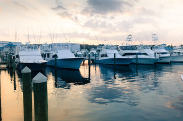Sportfishing Boats in Marina at Sunset