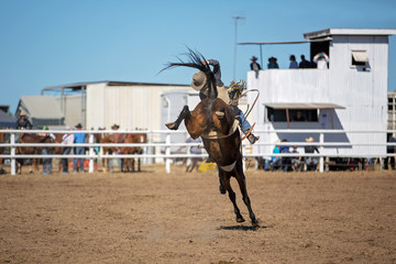 Bareback Bucking Bronc Riding At Country Rodeo