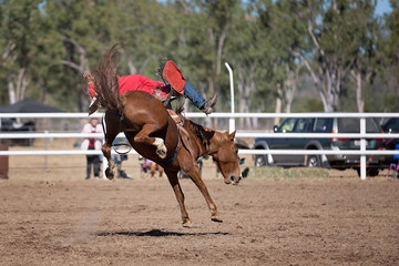 Bareback Bucking Bronc Riding At Country Rodeo