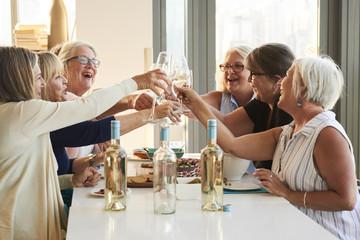 Senior Women Friends Enjoying Wine and Company