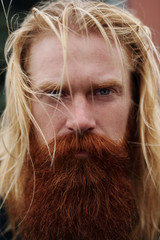 Portrait of handsome nordic man