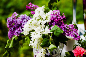 Beautiful composition of flowers is white, pink and purple