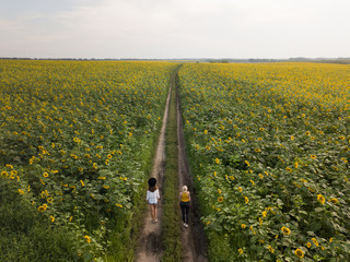two different yang women runs on the ground road sunflower field