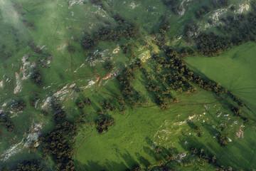 Aerial Green Farms