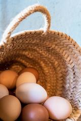 Wicker basket with fresh organic eggs
