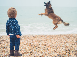 Little toddler on beach watching dog jump