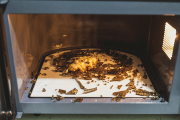 Shards of  glass plate in microwave oven