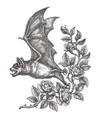 Рисунок, летучая мышь и дикие розы, чёрно-белая графика.
